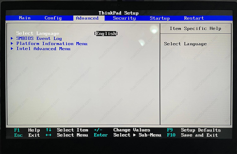 解锁ThinkPad BIOS高级选项, 解锁DVMT设置以及WWAN和Wi-Fi白名单