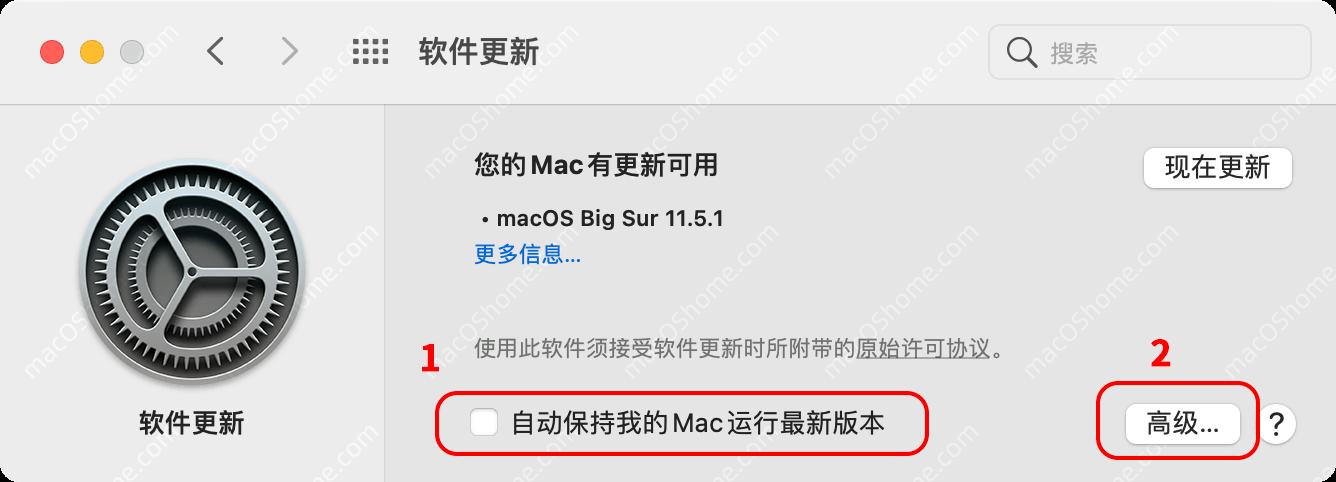 关闭macOS Big Sur系统自动更新和去除更新红点角标